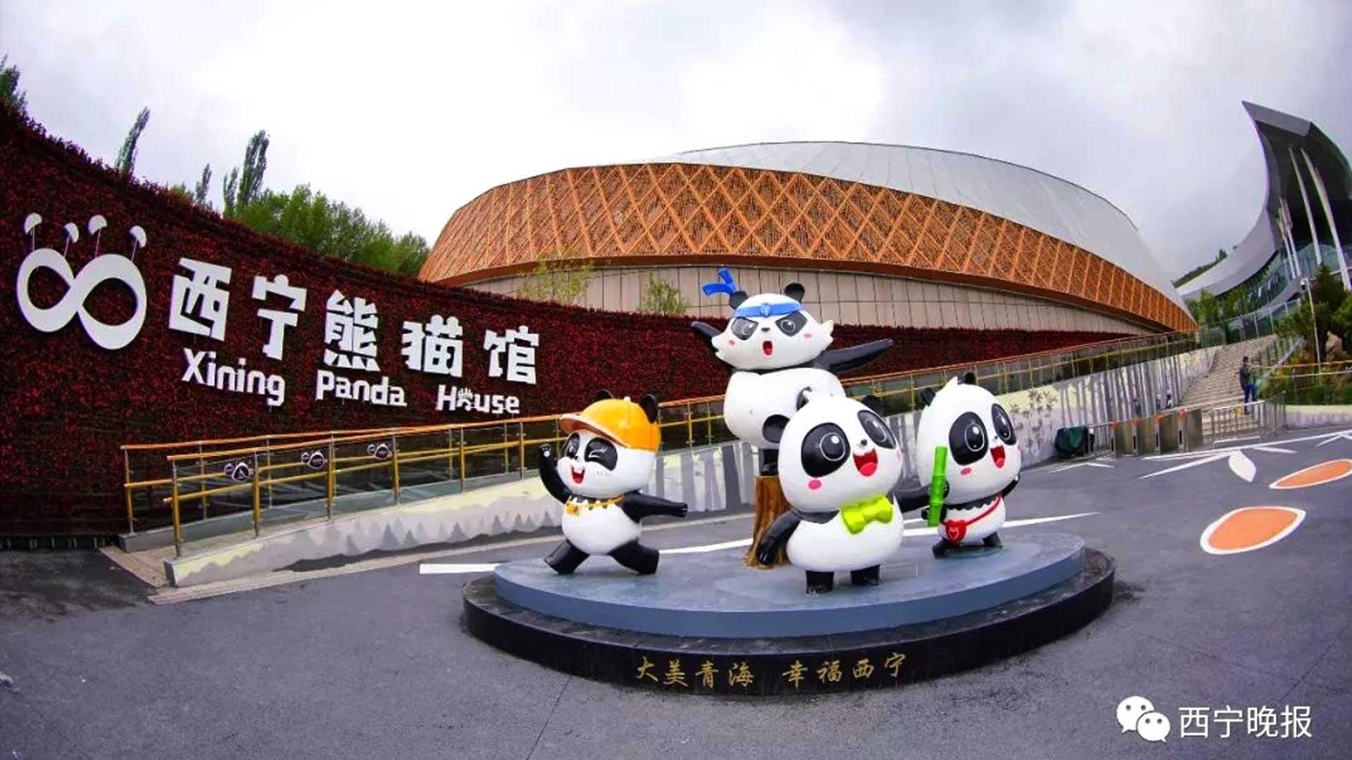 3D-Animation-PandaHouse-Ambassadors-7